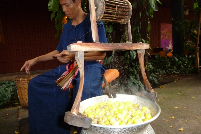 A seda sendo extraída do Bicho da seda. Silk right from the silkworm.
