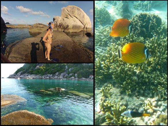 Hora de mergulhar com snorkel. Snorkelling time.