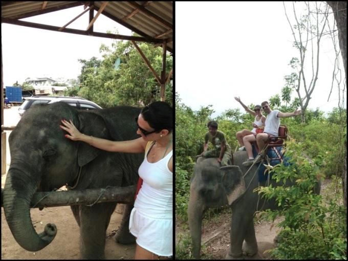 Passear num elefante é uma experiência única, mas eu senti muito dó, eu gosto de ver bicho solto. Take a ride in an elephant is an amazing experience, but I felt really shame. I like to see the animals free.